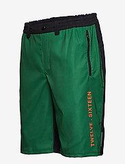 Twelve Sixteen - Shorts biker 17 Men - cycling shorts & tights - green - 2