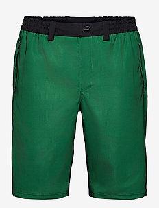 Shorts biker 17 Men - cycling shorts & tights - green
