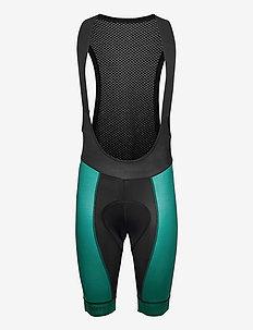 Bib lycra Elite Men - cycling shorts & tights - grey