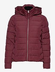 Abercrombie & Fitch - Packable Puffer Coat - gefütterte & daunenjacken - burgundy dd - 1