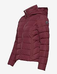 Abercrombie & Fitch - Packable Puffer Coat - gefütterte & daunenjacken - burgundy dd - 5