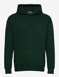 ANF MENS SWEATSHIRTS - basic sweatshirts - green dd