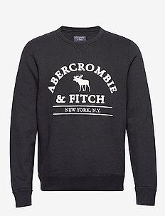 Sweatshirt Applique Crew - BLACK DD