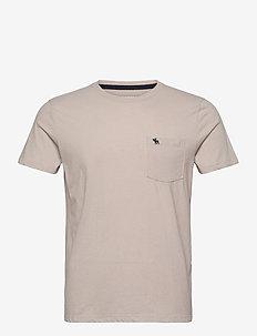 ICON CREWS - basic t-shirts - stone