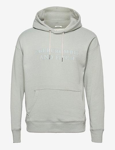 ANF MENS SWEATSHIRTS - kapuzenpullover - light blue/grey