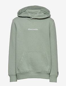 Logo Sweatshirt - kapuzenpullover - light green