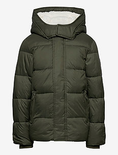 kids BOYS OUTERWEAR - puffer & padded - olive