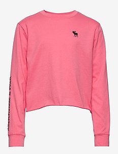 Logo Crop Tee - logo - pink