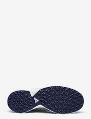 adidas Golf - W ALPHAFLEX SPORT - golf shoes - ftwwht/tecind/ftwwht - 4