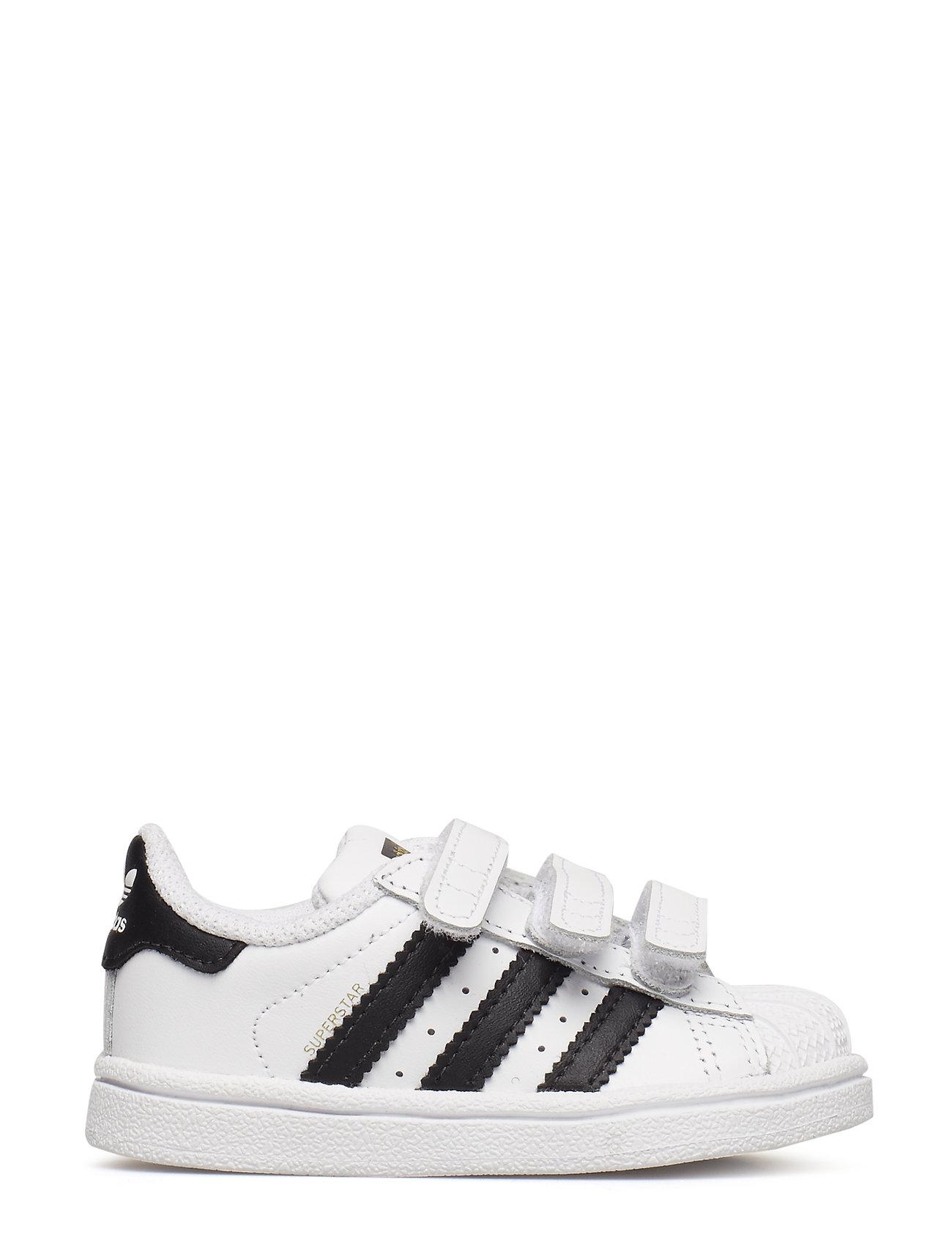 Superstar Cf I Sneakers Sko Hvid Adidas Originals