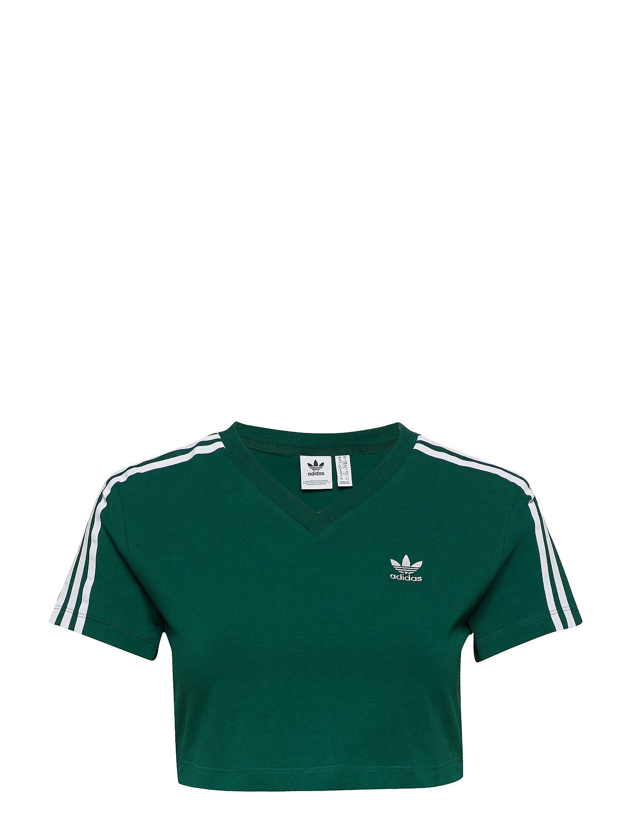 cgreen 29 Adidas Originals Cropped Tee 95 5qwEEgF
