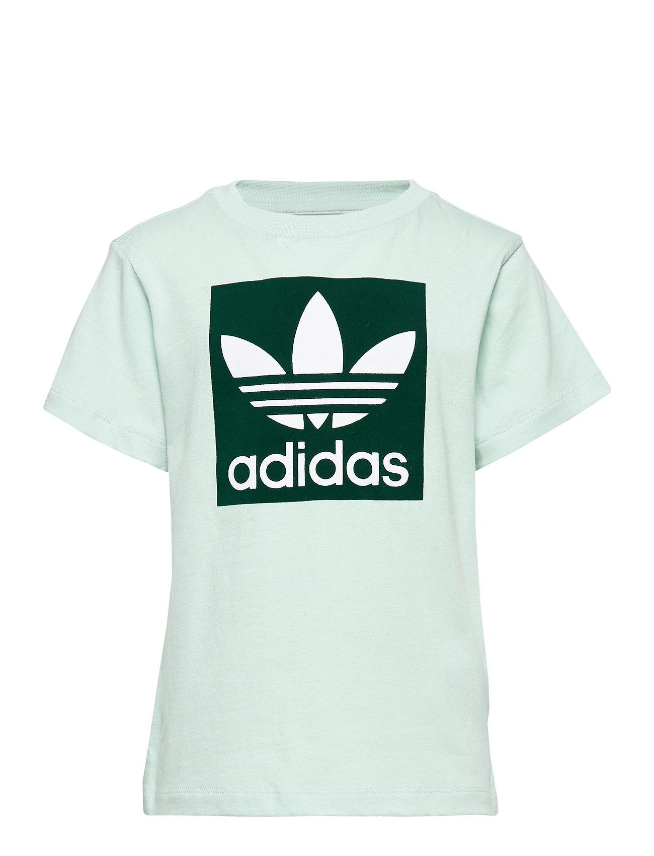 adidas Originals TREEFOIL TEE - VAPGRN/CGREEN/WHITE