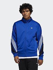 adidas Originals - 3STRIPE WRAP TT - track jackets - royblu/white - 0