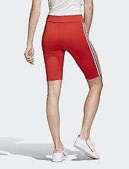 adidas Originals - SHORT TIGHT - träningsshorts - lusred/white - 6
