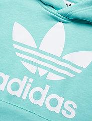 adidas Originals - TREFOIL HOODIE - kapuzenpullover - claqua/white - 2