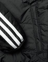 adidas Originals - PADDED JACKET - dunjakker & forede jakker - black/white - 8