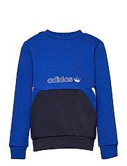 SPRT Collection Crew Sweatshirt - ROYBLU/LEGINK