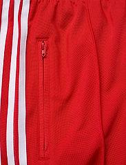 adidas Originals - Adicolor Classics Firebird Primeblue Track Pants W - trainingsbroek - scarle - 6