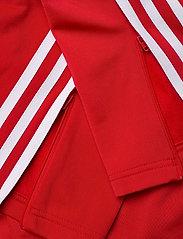 adidas Originals - Adicolor Classics Firebird Primeblue Track Pants W - trainingsbroek - scarle - 8