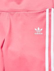 adidas Originals - Adicolor Classics Primeblue High-Waisted Short Tights W - träningsshorts - hazros - 6