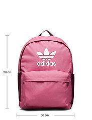adidas Originals - Adicolor Backpack - nyheter - roston/viccri/white - 6