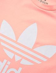 adidas Originals - Adicolor Dress - kleider - hazcor/white - 4