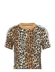 Cropped T-Shirt W - MULTCO/MESA