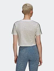 adidas Originals - Cropped T-Shirt W - crop tops - multco/white/talc - 3