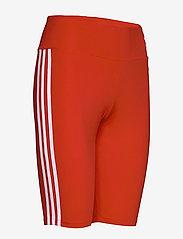 adidas Originals - SHORT TIGHT - träningsshorts - lusred/white - 3