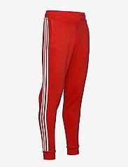 adidas Originals - 3-STRIPES PANT - pants - lusred - 4