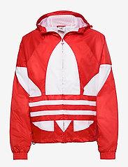adidas Originals - BIG TREFOIL WB - athleisure jackets - lusred - 1