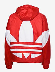 adidas Originals - BIG TREFOIL WB - athleisure jackets - lusred - 3