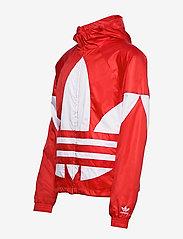 adidas Originals - BIG TREFOIL WB - athleisure jackets - lusred - 4