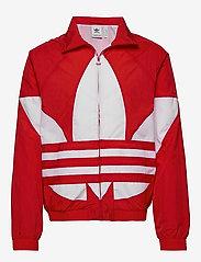 adidas Originals - BG TREFOIL TT - athleisure jackets - lusred - 1