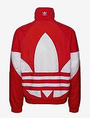 adidas Originals - BG TREFOIL TT - athleisure jackets - lusred - 3