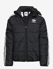 adidas Originals - PADDED JACKET - dunjakker & forede jakker - black/white - 0