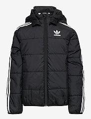 adidas Originals - PADDED JACKET - dunjakker & forede jakker - black/white - 1