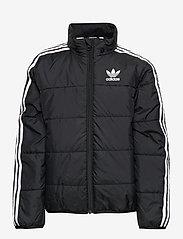 adidas Originals - PADDED JACKET - dunjakker & forede jakker - black/white - 2