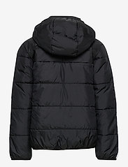 adidas Originals - PADDED JACKET - dunjakker & forede jakker - black/white - 3