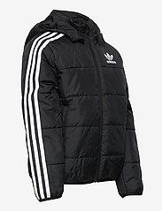 adidas Originals - PADDED JACKET - dunjakker & forede jakker - black/white - 6