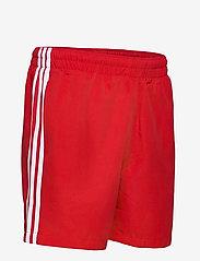adidas Originals - 3 STRIPE SWIMS - badehosen - scarle - 3