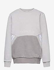 adidas Originals - SPRT Collection Crew Sweatshirt - sweatshirts - gretwo/dovgry - 0