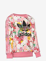 adidas Originals - HER Studio London Floral Crew Sweatshirt - sweatshirts - trapnk/multco/black - 3