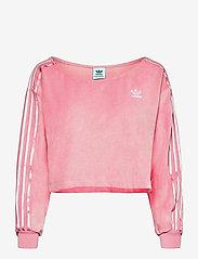 adidas Originals - Sweater W - sweatshirts - ltpink - 1