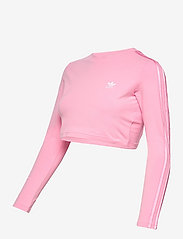 adidas Originals - Crop Long Sleeve T-Shirt W - topjes met lange mouwen - ltpink - 2