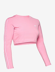 adidas Originals - Crop Long Sleeve T-Shirt W - topjes met lange mouwen - ltpink - 3