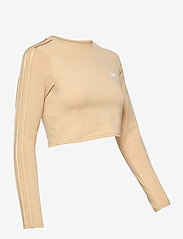 adidas Originals - Crop Long Sleeve T-Shirt W - topjes met lange mouwen - hazbei - 4