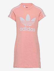 adidas Originals - Adicolor Dress - kleider - hazcor/white - 0