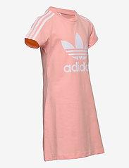 adidas Originals - Adicolor Dress - kleider - hazcor/white - 2