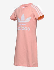 adidas Originals - Adicolor Dress - kleider - hazcor/white - 3